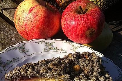 Apfel - Birnen - Kuchen 12