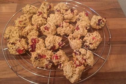 Haferflocken - Cranberry - Kekse 1