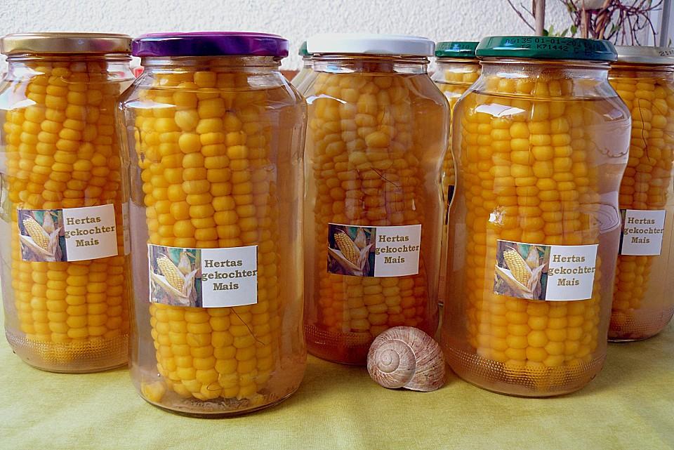 Maiskolben haltbar machen