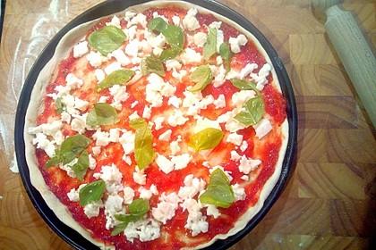 Der beste Pizzateig 124
