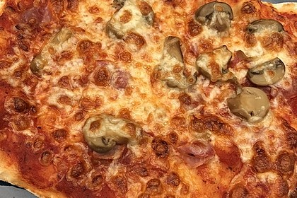 Der beste Pizzateig 138