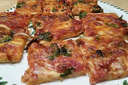 Der beste Pizzateig 37