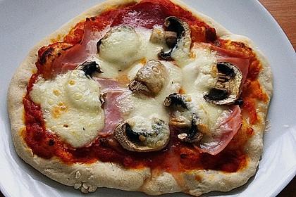 Pizzateig, mit wenig Hefe 14