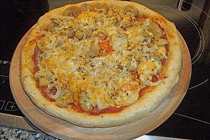 Pizzateig, mit wenig Hefe 13