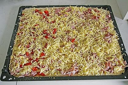 Pizzateig, mit wenig Hefe 27