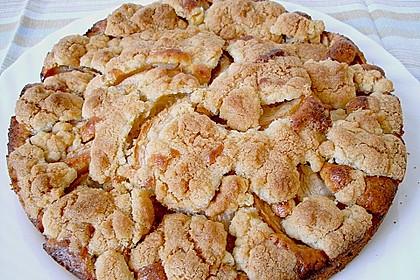 Apfelkuchen mit Butterstreuseln 28