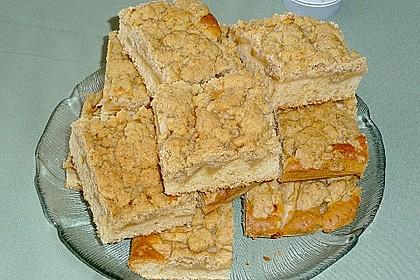 Apfelkuchen mit Butterstreuseln 7