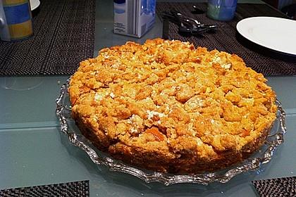 Apfelkuchen mit Butterstreuseln 65