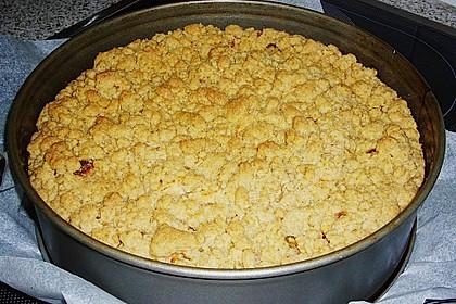 Apfelkuchen mit Butterstreuseln 55