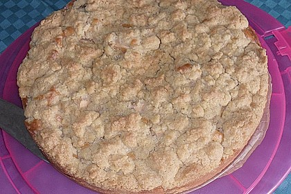 Apfelkuchen mit Butterstreuseln 48