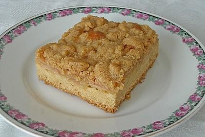 Apfelkuchen mit Butterstreuseln 25