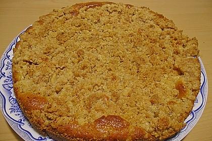 Apfelkuchen mit Butterstreuseln 60