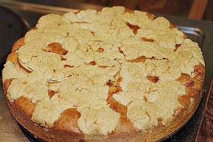 Apfelkuchen mit Butterstreuseln 32