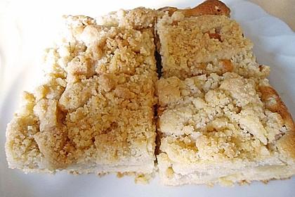 Apfelkuchen mit Butterstreuseln 66