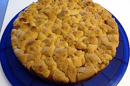Apfelkuchen mit Butterstreuseln 47