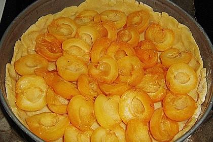 Aprikosenkuchen 6