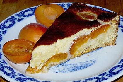 Aprikosenkuchen 5