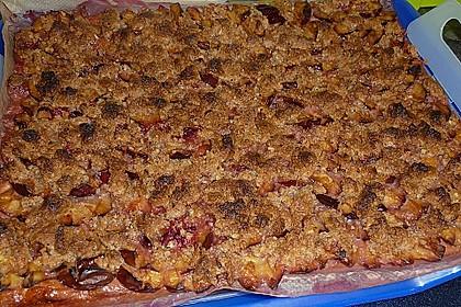 Zwetschgenkuchen mit Nuss - Streuseln und Hefeteig 28