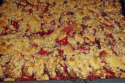 Zwetschgenkuchen mit Nuss - Streuseln und Hefeteig 22