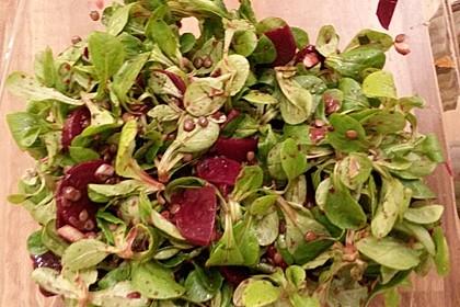 Feldsalat mit Roter Bete 7