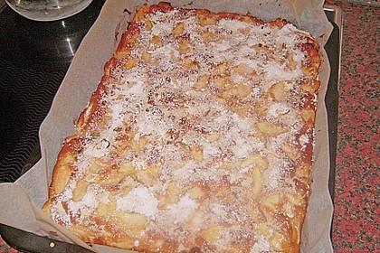Apfelkuchen 24