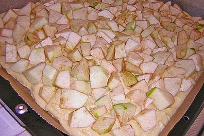 Apfelkuchen 31