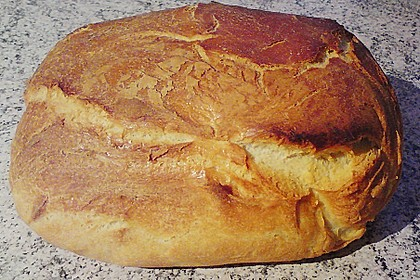 Wiener Brot 46