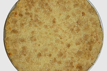 Käsekuchen mit Pudding , Grieß und Streuseln 9