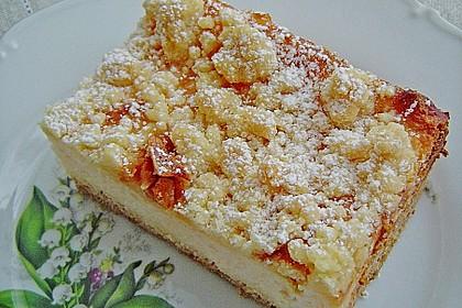 Käsekuchen mit Pudding , Grieß und Streuseln 1