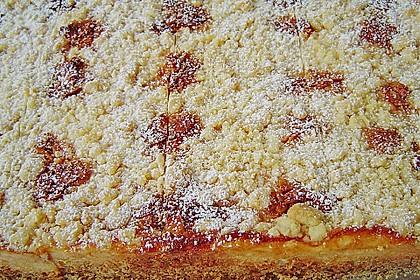 Käsekuchen mit Pudding , Grieß und Streuseln 8