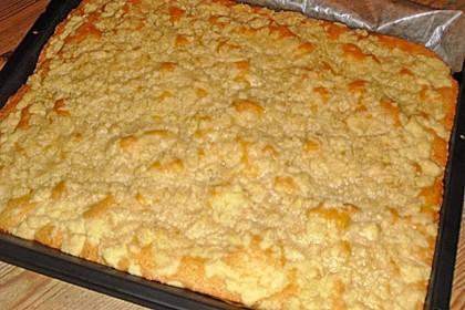 Bester Streuselkuchen der Welt 14