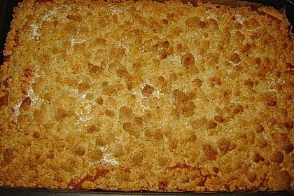 Bester Streuselkuchen der Welt 2