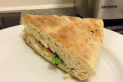 Fitness Sandwich 9