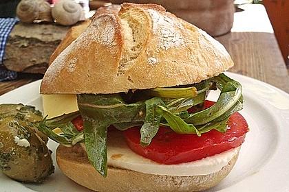 Fitness Sandwich 2