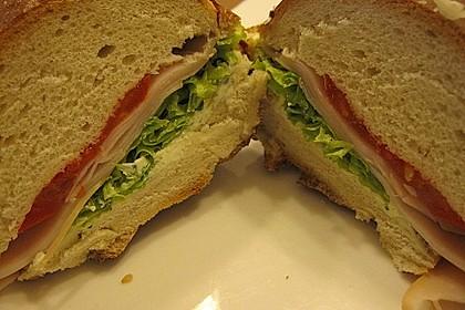 Fitness Sandwich 3