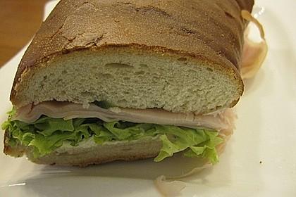 Fitness Sandwich 16