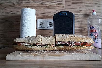 Fitness Sandwich 13