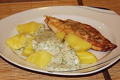 Fisch mit Petersiliensoße 1