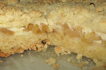Apfelkuchen mit Puddingcreme und Streuseln 3
