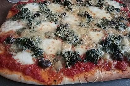 Pizzateig 98