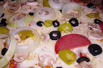Pizzateig 162