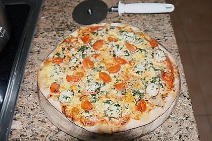 Pizzateig 110