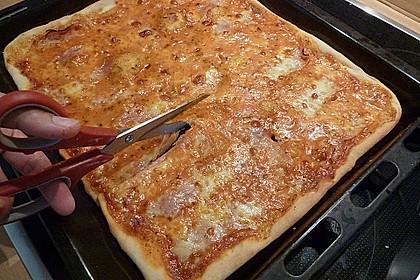 Pizzateig 168