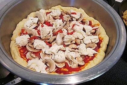 Pizzateig 142