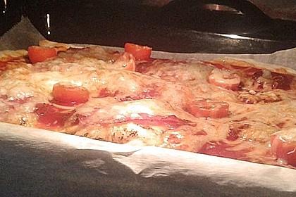 Pizzateig 172