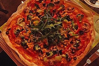 Pizzateig 133