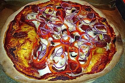 Pizzateig 106