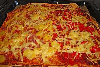 Pizzateig 111