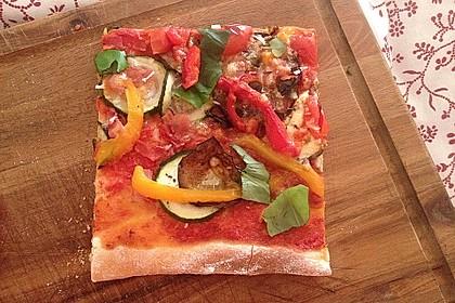 Pizzateig 154