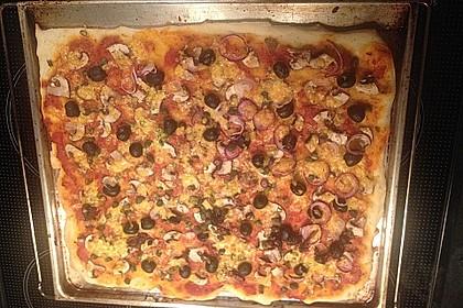 Pizzateig 17